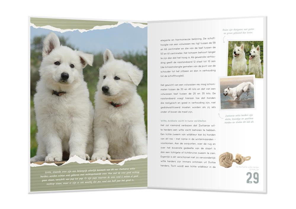 SCHWERING de Zwitserse Witte Herder boek
